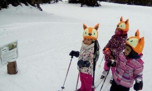 Ски за деца от 5 до 10 г