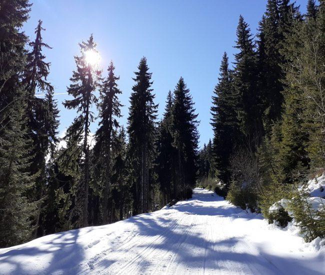 Ако не караме ски, но обичаме планината