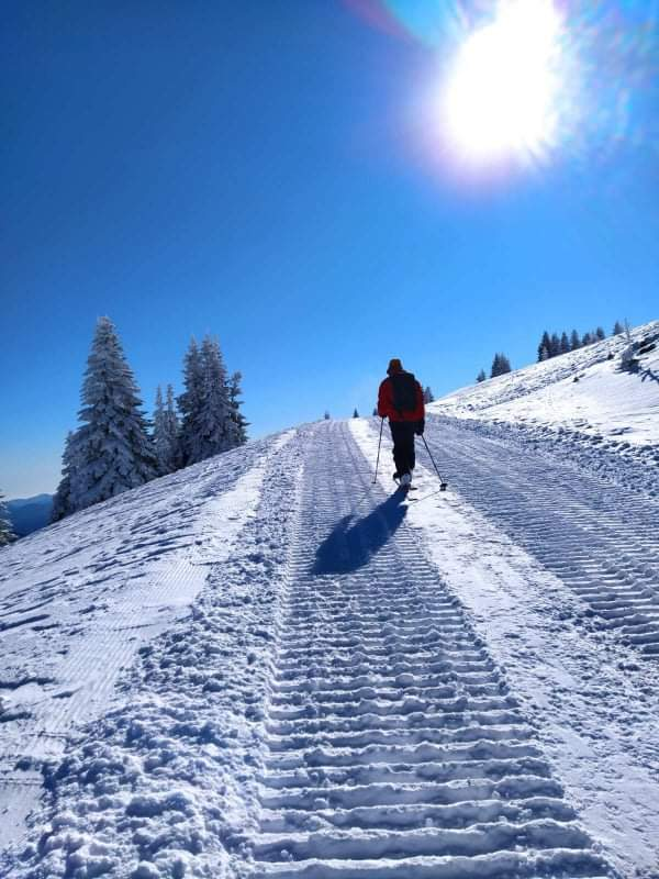 кадри от краткия преход със ски с колани в един слънчев следобед